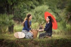 härlig flicka Thailand Royaltyfri Fotografi