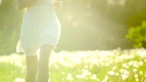Härlig flickaspring och att ha gyckel på maskrosfält i sommardag i solsolnedgång Frihetshälsolycka lyckligt barn stock video