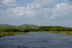 härlig flod Fotografering för Bildbyråer