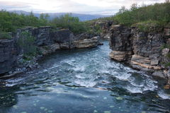 Härlig flod, Abisko, Sverige Royaltyfri Foto