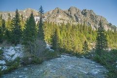 Härlig flod i de höga bergen Royaltyfria Foton