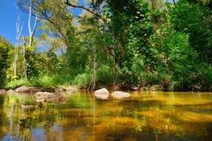 Härlig flod i den Waimea dalen på den Oahu ön Arkivfoto