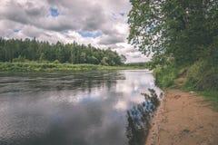 Härlig flod i skogen - tappningfilmeffekt Royaltyfria Foton