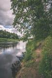 Härlig flod i skogen - tappningfilmeffekt Royaltyfria Bilder