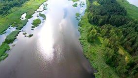 Härlig flod med gröna banker arkivfilmer