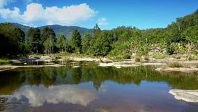 Härlig flod med kraftiga forsar mot lös djungel arkivfilmer