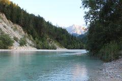 Härlig flod Sava nära Kranjska Gora, Slovenien Arkivbild