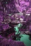 Härlig flod som flödar till och med omväxlande overklig kulör skog Arkivbilder