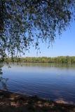 Härlig flodDonau Fotografering för Bildbyråer
