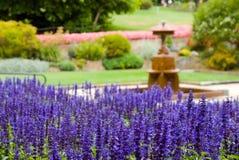 härlig formell trädgård royaltyfri bild
