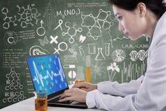 Härlig forskare som arbetar med bärbara datorn på arbetsplatsen Arkivfoto
