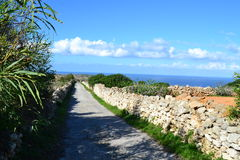Härlig fotvandra väg med en stor sikt av havet i Malta Arkivbild