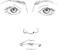 Härlig framsida av den unga kvinnlign med blåtiror och ögonbryn på den vita bakgrunden Royaltyfria Foton