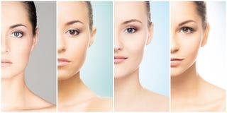 Härlig framsida av den unga och sunda flickan i collagesamling Plastikkirurgi, hudomsorg, skönhetsmedel och lyfta för framsida royaltyfri fotografi