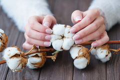Härlig fransk manikyr och bomullsblomma Arkivfoto