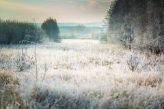 Härlig frostig morgon i bygd Arkivfoton