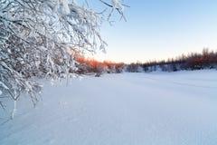 Härlig frostig morgonlandskapgryning Arkivbilder