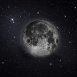 härlig fullmåne Royaltyfri Fotografi