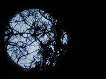 Härlig fullmåne närmast höstdagjämningen Arkivfoton