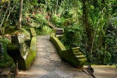 Härlig gångbana i Balineseträdgården, Bali, Indonesien Arkivbild