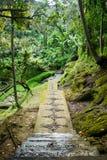 Härlig gångbana i Balineseträdgården, Bali, Indonesien Arkivbilder