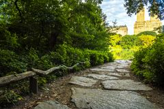 Härlig gångbana i Central Park Arkivfoto