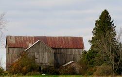 Härlig gammal ladugård med det rostiga taket royaltyfri fotografi