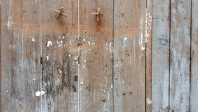 Härlig gammal wood väggbakgrund Arkivfoton