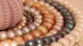 Härlig garnering av kulöra pärlor royaltyfria foton