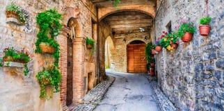 Härlig gatagarnering med blommor i den medeltida staden Spello arkivfoto