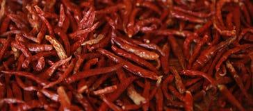 Härlig glödhet Thailand torr chili och kryddigt som göras för matblandning och ört arkivfoto