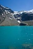 härlig glaciär Arkivfoton