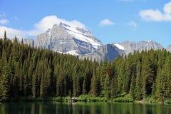 härlig glaciärnationalpark Royaltyfri Bild