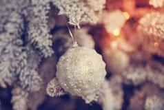 Härlig glass boll på julgranen Royaltyfri Foto