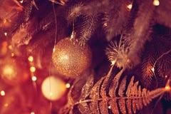 Härlig glass boll på julgranen Royaltyfri Fotografi