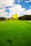 härlig golfgreen Arkivbilder