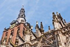 Härlig gotisk stildomkyrka i Den Bosch, Nederländerna Arkivbild