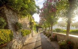 Härlig gränd mycket av träd och blommor på den Capri ön, Italien royaltyfri bild