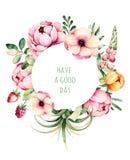 Härlig gräns för vattenfärgrundaram med pionen, fältvinda, filialer, lupin, luftväxt, jordgubbe stock illustrationer