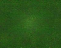 härlig gräsgreentextur Royaltyfri Fotografi