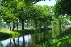 Härlig gräsplan landskap Arkivfoton