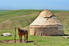 Härlig grässlätt i Xinjiang Kina Arkivfoto