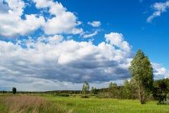 Härlig grön äng nära skogen under den blåa molniga himlen under solig dag Royaltyfria Foton
