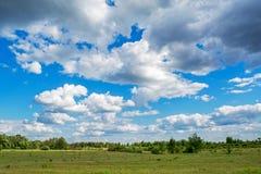 Härlig grön äng under den blåa molniga himlen under solig dag Arkivfoto