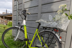 Härlig grön cykel med blommakorgen Royaltyfri Fotografi