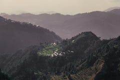 Härlig grön dal i bergen arkivfoto