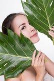 härlig grön holdingväxtkvinna royaltyfri foto