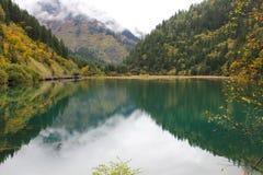 Härlig grön sjö Arkivfoto