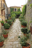 Härlig grön smal gata i San Marino Royaltyfri Foto