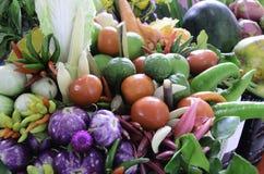 Härlig grönsak Arkivfoton
